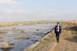 Belediye Başkan Adayı Kalaycı:Sivrisinek Problemine 60 Gün de Son