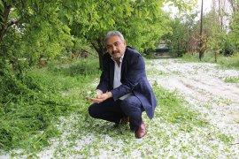 5 dakika yağan dolu, elma ve ekili alanlara büyük zarar verdi