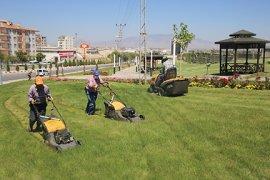 Yeşil Alanlarda Düzenleme Ve Peyzaj Çalışmaları Devam Ediyor