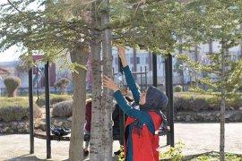 KMÜ Öğrencileri Kuşları Da Unutmadı