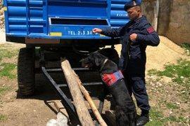 Karaman'da Jandarmadan Uyuşturucu Operasyonu