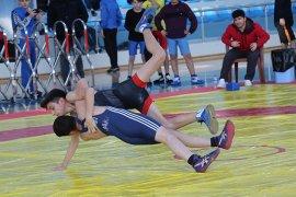Analig Güreş Yarı Final Müsabakaları Karaman'da Başladı