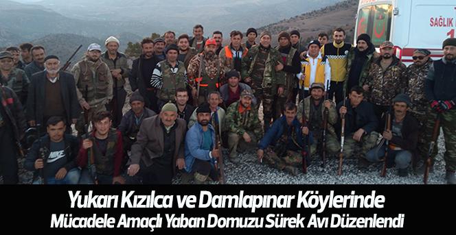 Karaman'nın Köylerinde Yaban Domuzu Sürek Avı Düzenlendi