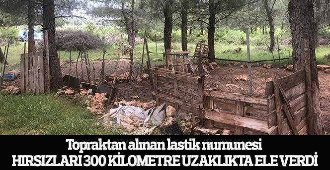 Antalya'da meydana gelen hayvan hırsızları Karaman'da Yakalandı