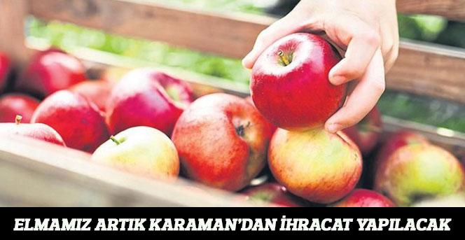 Elmamız Artık Karaman'dan İhracat Yapılacak