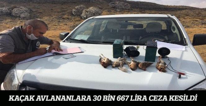 Kaçak avlananlara 30 bin 667 lira ceza Kesildi