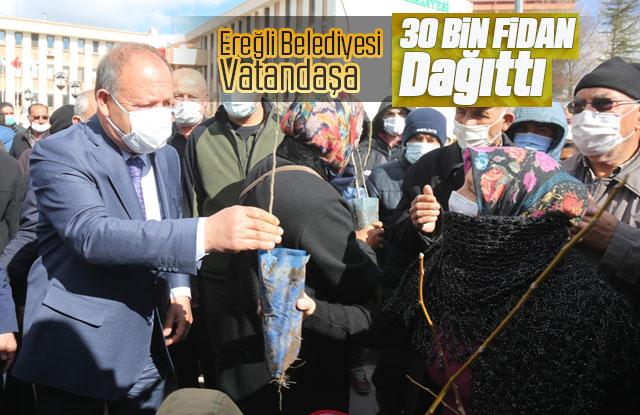 Ereğli Belediyesi Vatandaşa 30 Bin Fidan Dağıttı