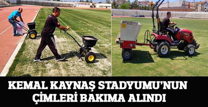 Kemal Kaynaş Stadyumu'nun Çimleri Bakıma Alındı