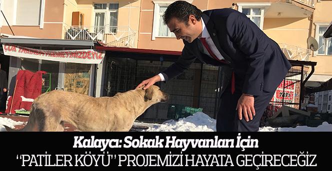 """KALAYCI: """"Sokak Hayvanları ile İlgili Probleme Kesin ve Kalıcı Çözüm Getireceğiz"""""""