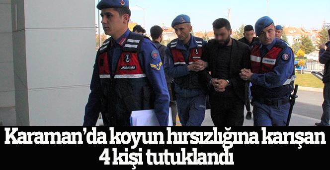 Koyun hırsızlığına karışan 4 kişi tutuklandı