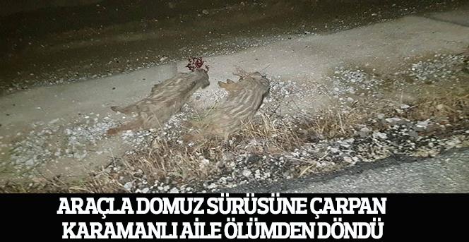 Araçla domuz sürüsüne çarpan Karamanlı aile ölümden döndü