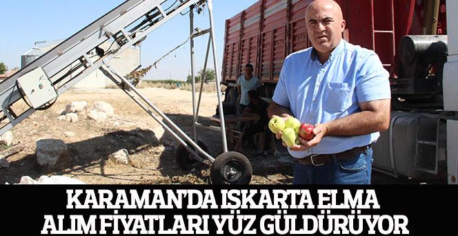Karaman'da ıskarta elma alım fiyatları yüz güldürüyor