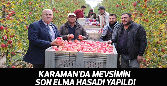 Karaman'da Mevsimin Son Elma Hasadı Yapıldı