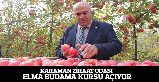 Karaman Ziraat Odası Elma Budama Kursu Açıyor