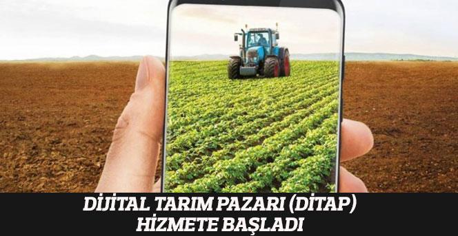 Dijital Tarım Pazarı (DİTAP) Hizmete Başladı.